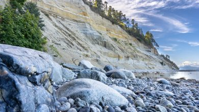 Photo of Lily Point: Trails, beaches, and a 200 foot tall bluff
